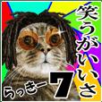 リアルキジトラ❤笑える猫写真7