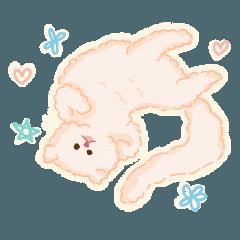 Tankun The little cat