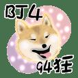Xiao Chai dog 0329 ~2