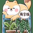 小圓狐3-觀葉植物篇(大貼圖)