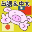 真可愛豚・日語&中文
