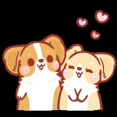 สติ๊กเกอร์ไลน์ Corgi KaKa: Sweet Couple Daily Life