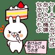 Akemi's rabbit