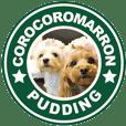corocoromarron+pudding