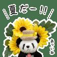 夏が来たー!(上野より愛をこめて)