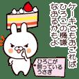 Hiroko's rabbit