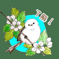 雪の妖精 シマエナガちゃんと小鳥達