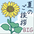 夏のご挨拶【BIG】