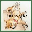 KOKOSHIBA 1