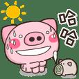 夏天日常♡可愛的小豬