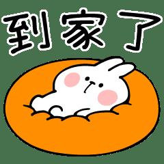 撒嬌兔的必備聯繫用語