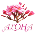 ALOHA-06