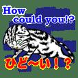 猫で英会話 よく使う英語編vol4