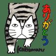 Cat character Kabamaru~heartwarming ~