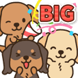 ほのぼのダックス日和♪(BIG)