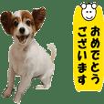 動く犬のパピィ-4 丁寧な言葉
