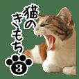 猫のきもち 3