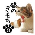 NEKO no kimochi 3 cat