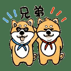 柴犬ブラザーズのスタンプ