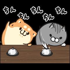 動くボンレス犬とボンレス猫