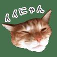 Mugicha stamps