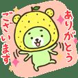Yuzu bear