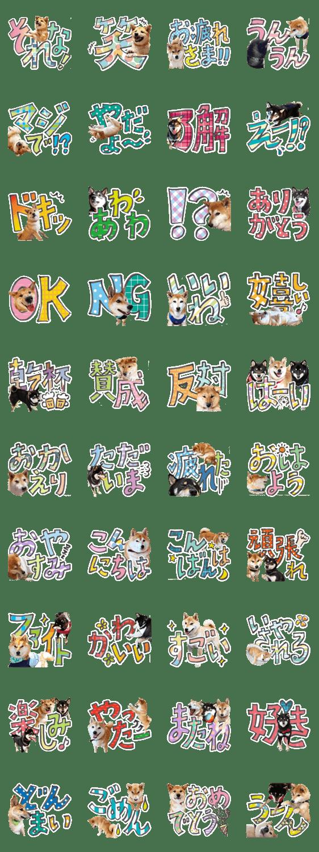 「やんちゃ柴犬 茶々姫とお友達★でか文字」のLINEスタンプ一覧