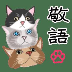 【敬語】可愛い猫と苺の詰め合わせ