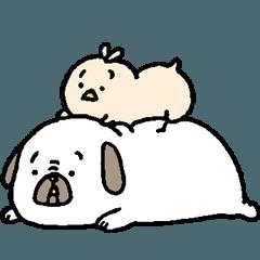 家有胖狗4