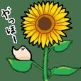 文鳥スタンプ17〜夏
