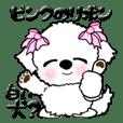 白い(多分)犬【ピンクのリボン】