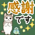 文字大きめ☆猫たちのスタンプ