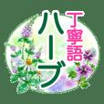 花★ハーブ★パステル画★丁寧語★文字大