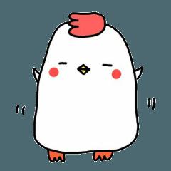 小吉是隻雞