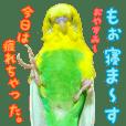yuzunichi vol.04