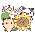 ちびネコセット【夏】