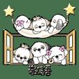 シーズー犬&リボン犬【日常敬語】