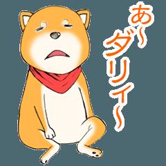 MAMEO by AKARI NIBU(Hinatazaka46)