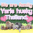 Yaris Husky Thailand