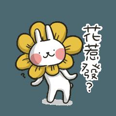 哈囉兔兔(上班究極篇)