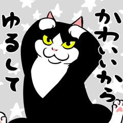A little fat cat anime(Healing Words)