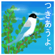 "sticker of the wild bird. ""onaga"""