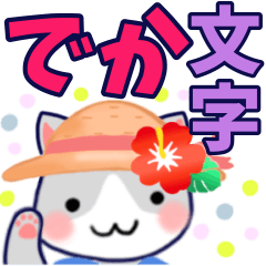 Summer cat big character everyday