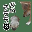 INU no kimochi 3 dog