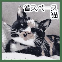 省スペース三毛猫+顔文字