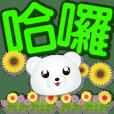 Cute white bear-colorful big font