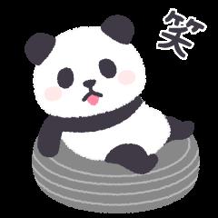 pandan soft(animated)