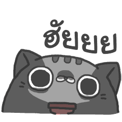 SLID CATS