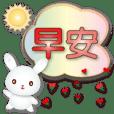 Cute little white rabbit-Speech balloon