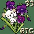 【Big】シーズー犬33『日常に花を!』